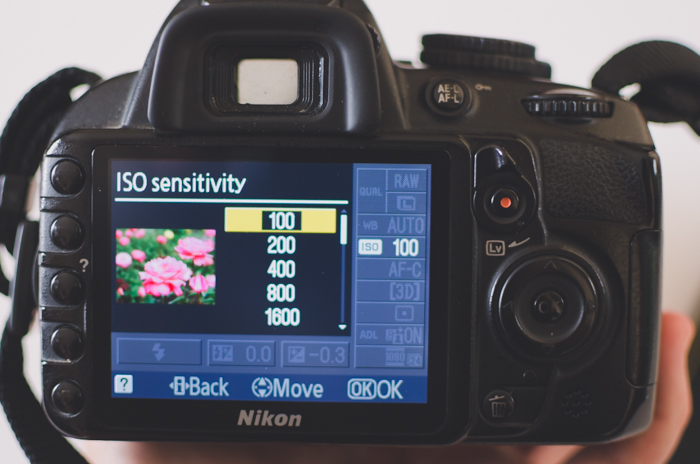 Adjusting iso camera settings on a DSLR camera
