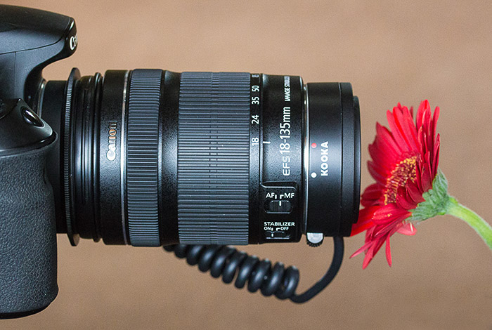 A DSLR camera taking a macro photography of a red flower