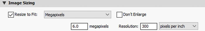 Screenshot of how to resize an image in Lightroom using the megapixels option