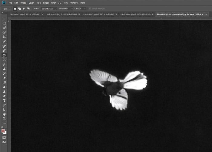 Uma captura de tela de formas em movimento no Photoshop