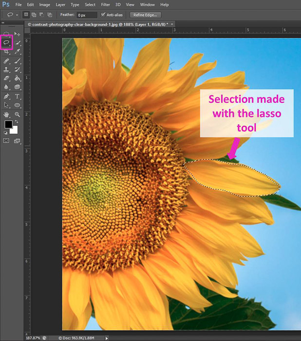 Screenshot of using the Lasso Tool shortcut Photoshop selection tools