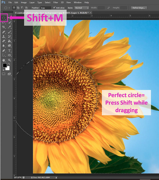 Screenshot of using the elliptical marquee Tool shortcut on Photoshop