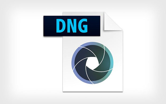 The icon for dng file format