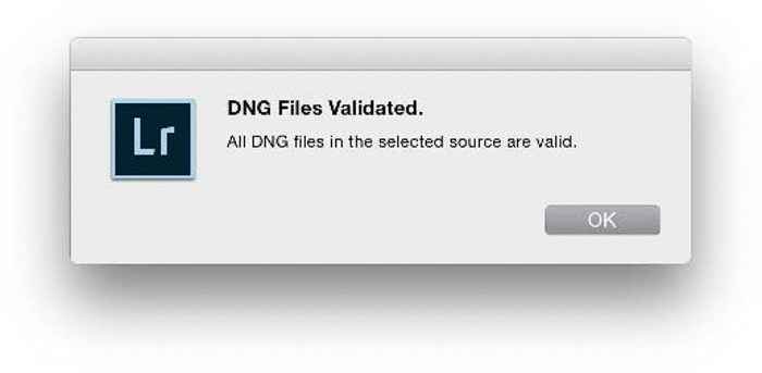 A Lightroom window sating : DNG files validated