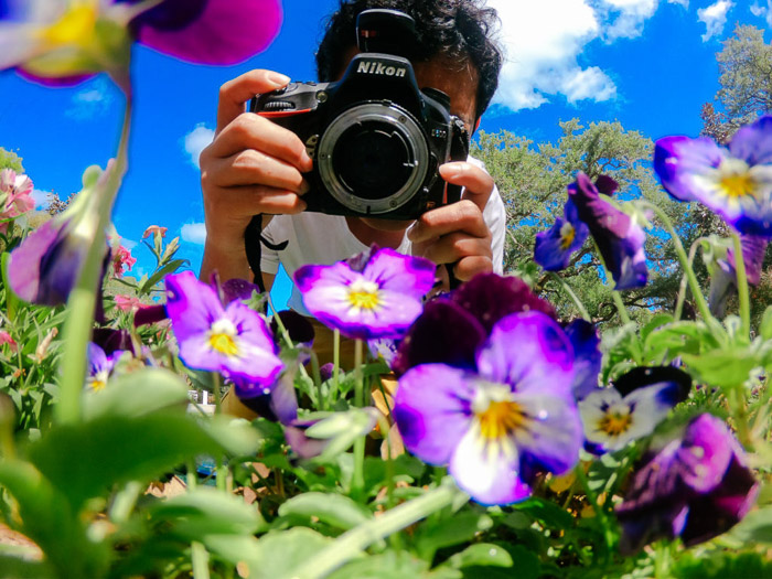 A photographer taken a shot of purple flowers with a DSLR