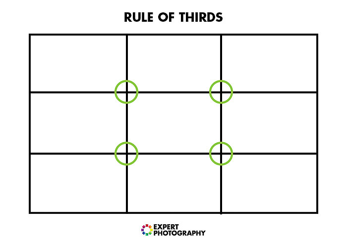A diagram explaining the rule of thirds in photography composition for better food photos