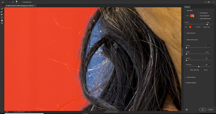 Screenshot of using the close up selection tool to remove the background in Photoshop