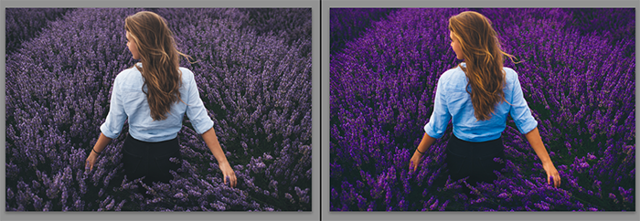 Diptych showing what is vibrance and what it does to a portrait photo
