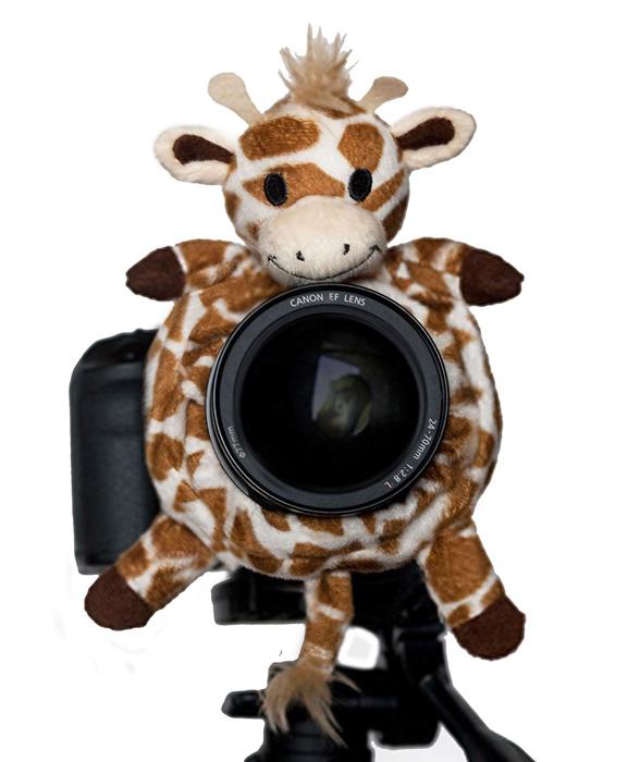 Shutter Huggers Giraffe
