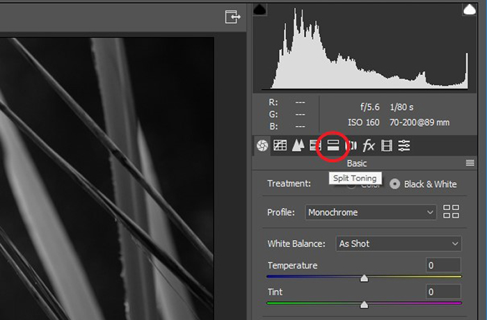 screenshot of editing black and white photography