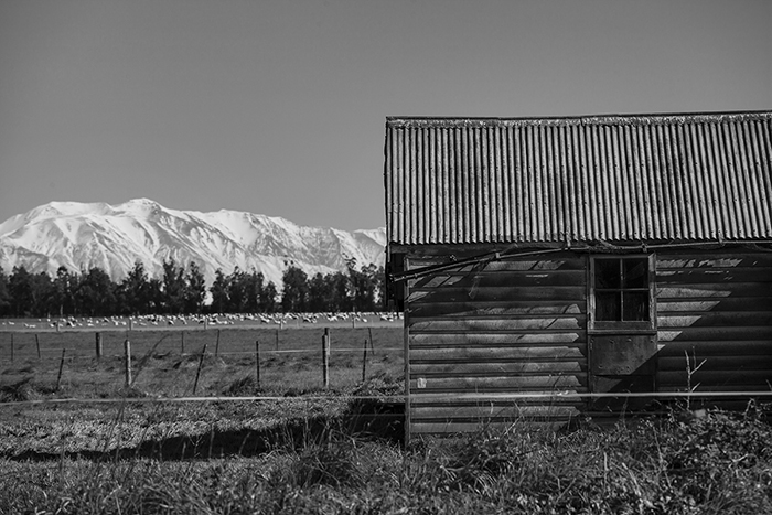 Black and white photo of State Highway One in the early afternoon, Canterbury, New Zealand.