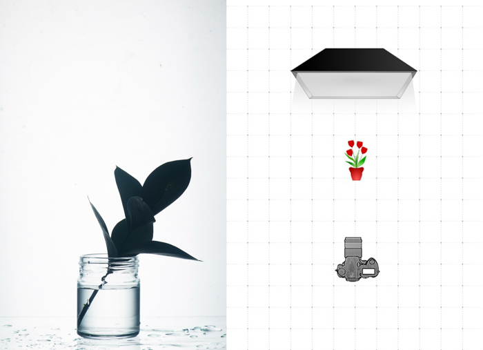Diptych of a photo of leaf in a glass jar and a diagram explaining the glass photography lighting setting