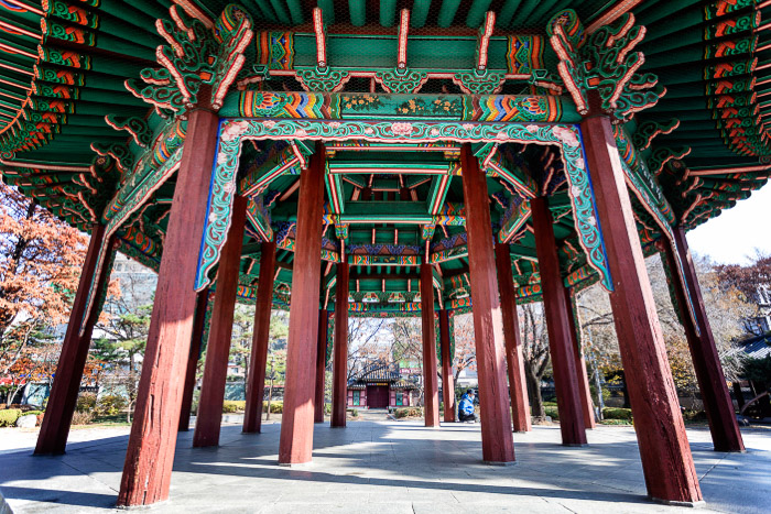 A colorful wooden structure shot outdoors with the best architecture camera
