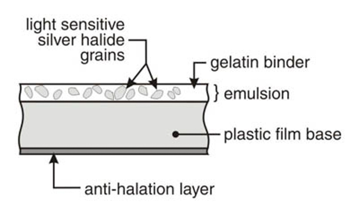 Graphic explaining the structure of film: the light sensitive silver halide grains, gelatin binder, emulsion, plastic film base and the anti-halation layer.