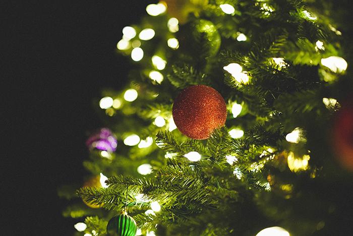 Luzes de natal em uma árvore