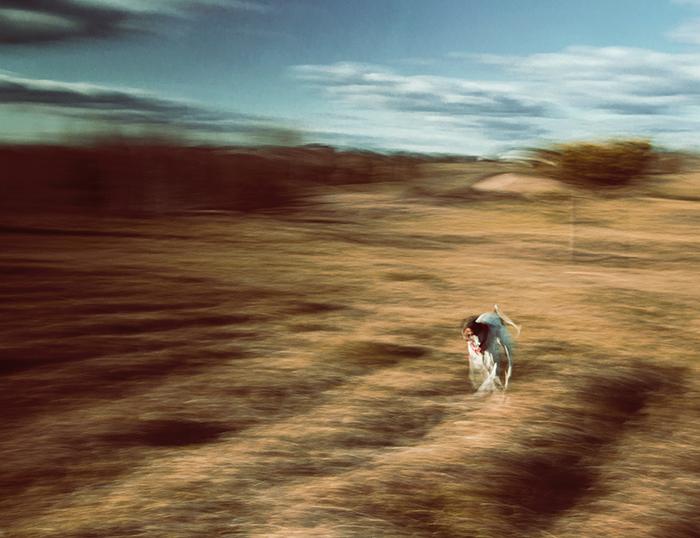 Um tiro borrado abstrato da ação do cão