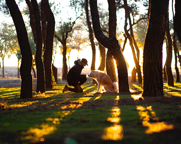 A candid shot of a dog owner and dog in a forest