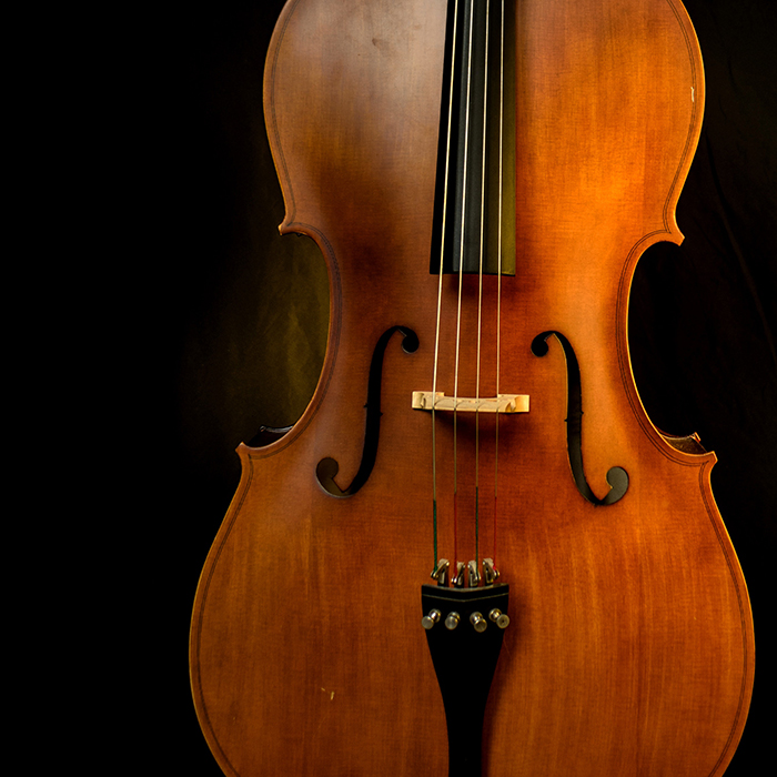 A close up fine art photography still life of a violin on black background