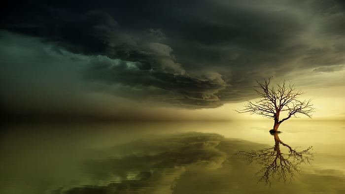 Atmospheric fine art photography landscape