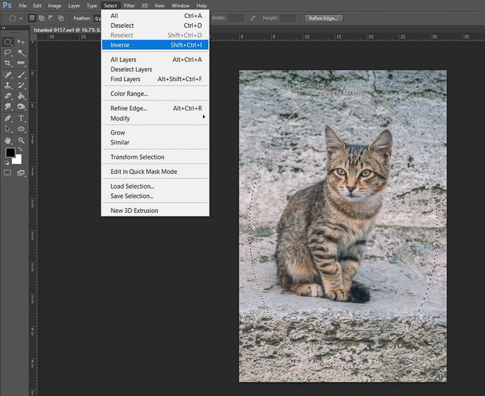 a screenshot showing how to edit photos in Photoshop for beginners - inverse layers