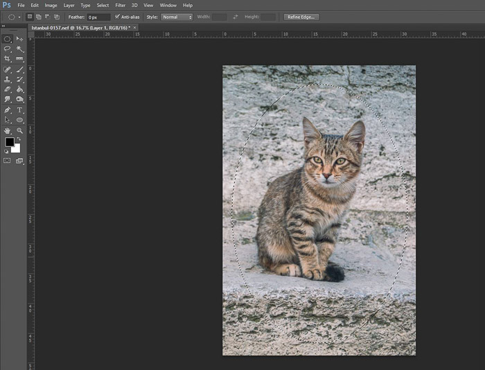 a screenshot of adding a vignette in Photoshop