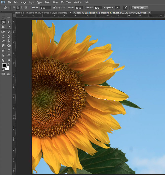 a screenshot showing how to select free shape in Photoshop