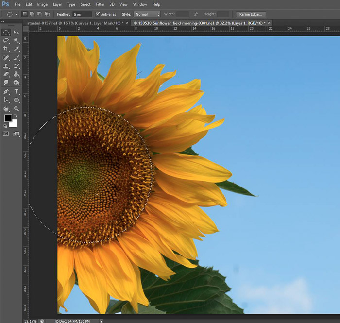a screenshot of selecting a particular shape in Photoshop