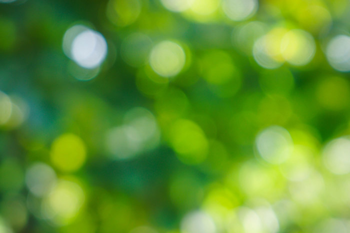 Abstract photography featuring green and yellow bokeh lights