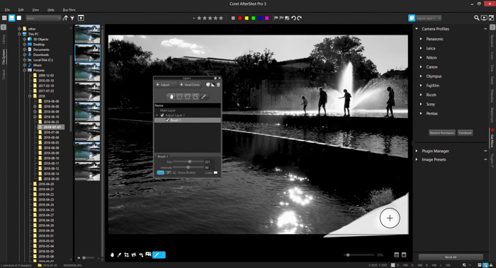 A screenshot of using layers in AfterShot Pro 3 review