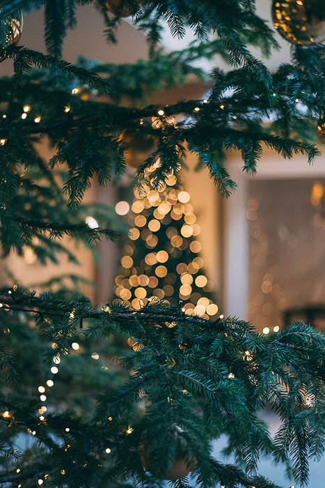 how to achieve spectacular christmas bokeh with examples spectacular christmas bokeh