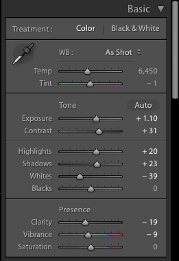 A screenshot showing how to use Lightroom Panels to achieve the Film Photography look