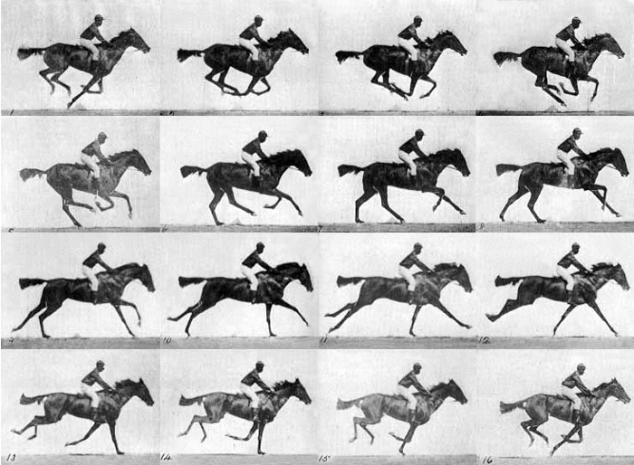 Sequence of a Race Horse Galloping - Eadweard Muybridge, most famous photos