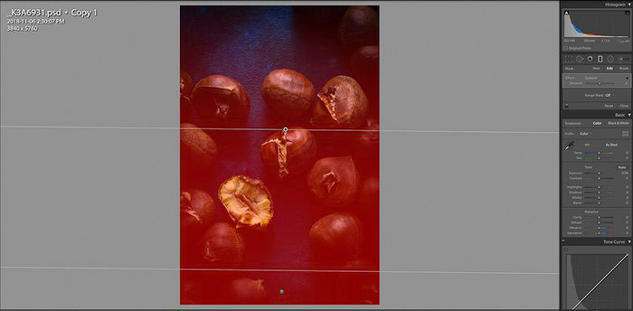 Screenshot of editing a flat lay food photo of chestnuts - using lightroom shortcuts