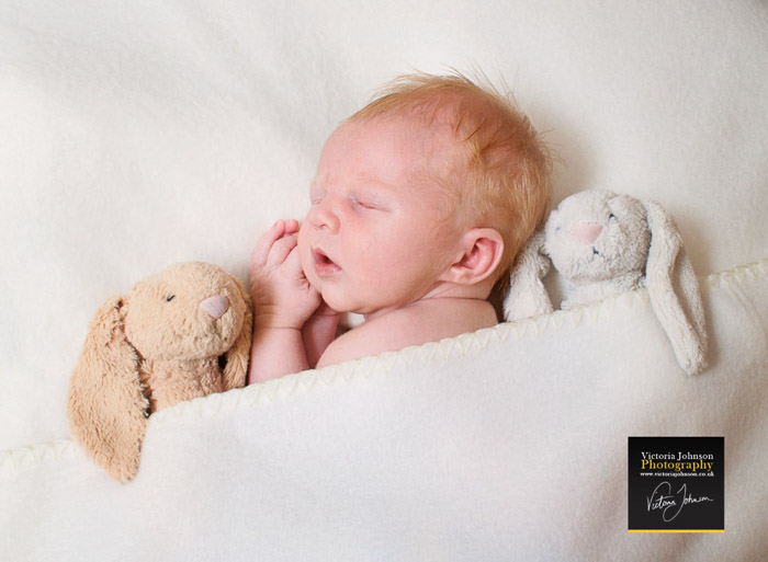 A newborn cradled by a cloth and teddy bears as newborn photography props