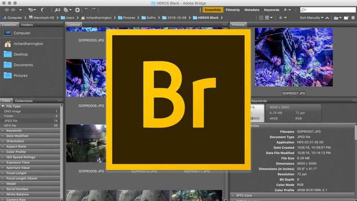 A screenshot of opening Adobe Bridge