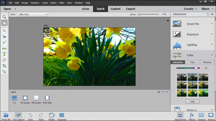 A screenshot of editing on Photoshop Elements