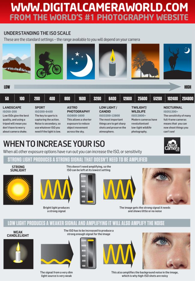 When to Increase Your ISO photography cheat sheet