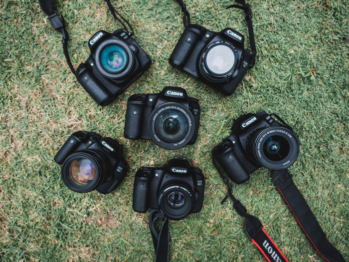 Six different camera bodies on the grass