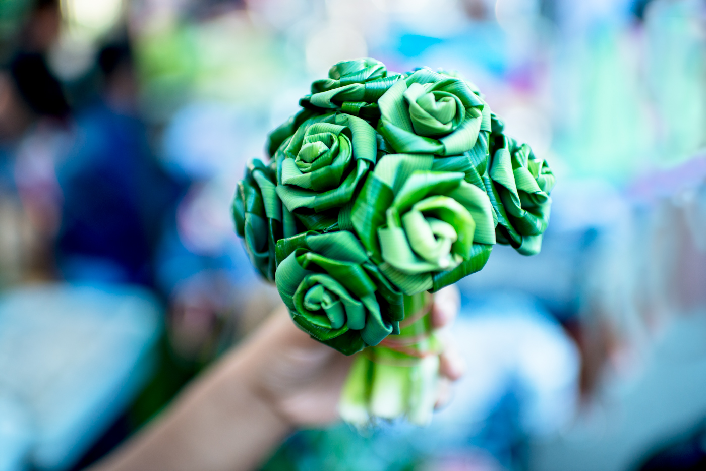 A close up of a person holding a green bouquet - photoshoot themes