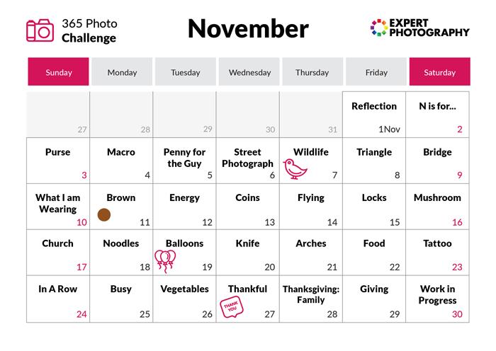 November - 365 photo challenge calendar