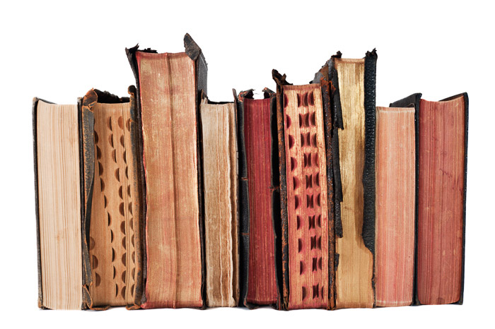 A line of old books shot with the best Nikon prime lens for still life