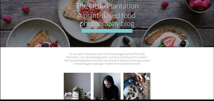 A screenshot from the Little Plantation blog