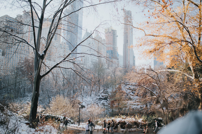 Central Park - New York, USA. famous places to photograph