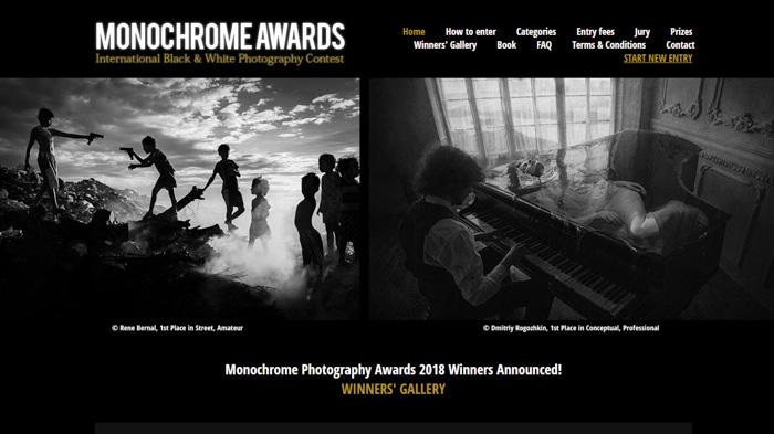 Captura de tela da página inicial do prêmio de fotografia monocromática - Melhores concursos de fotografia