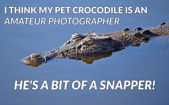 Photography jokes overlayed on a photo of a crocodile in water