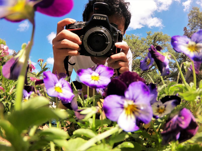 A photographer using reversing rin gs for macro photography of flowers