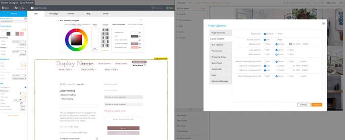 Screenshot of Zenfolio customization panels