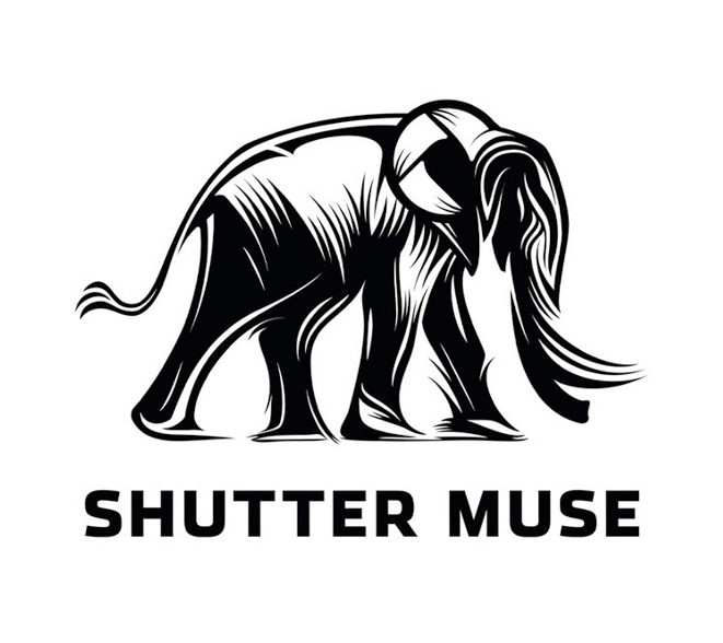 Shutter Muse online photography blog logo design