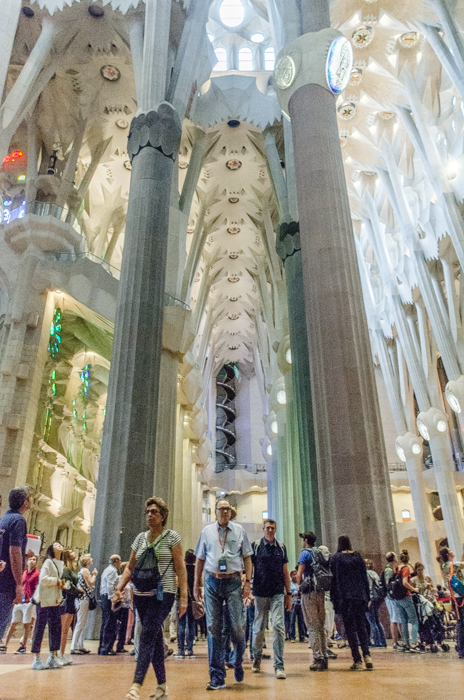 The stunning interior of the Sagrada Familia in Barcelona