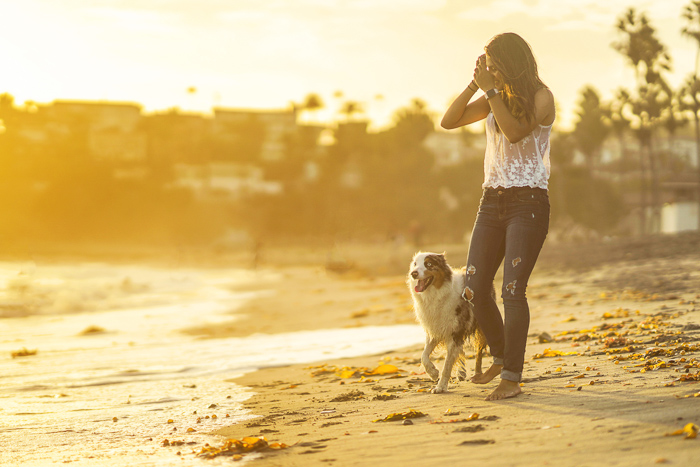 Evening portrait of a woman and dog walking on a beach - photography and law